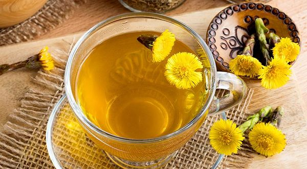 Чай из мать-и-мачехи с шиповником от кашля