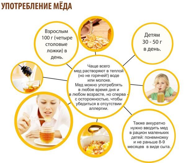Как принимать мед