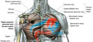Особенности тейпирования сопутствующей патологии плечевого пояса