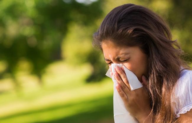 Чихание при аллергии на березу