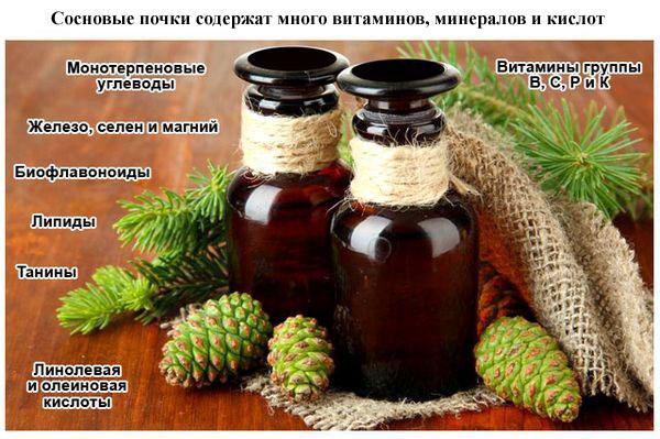 Состав витаминов в сосновых почках
